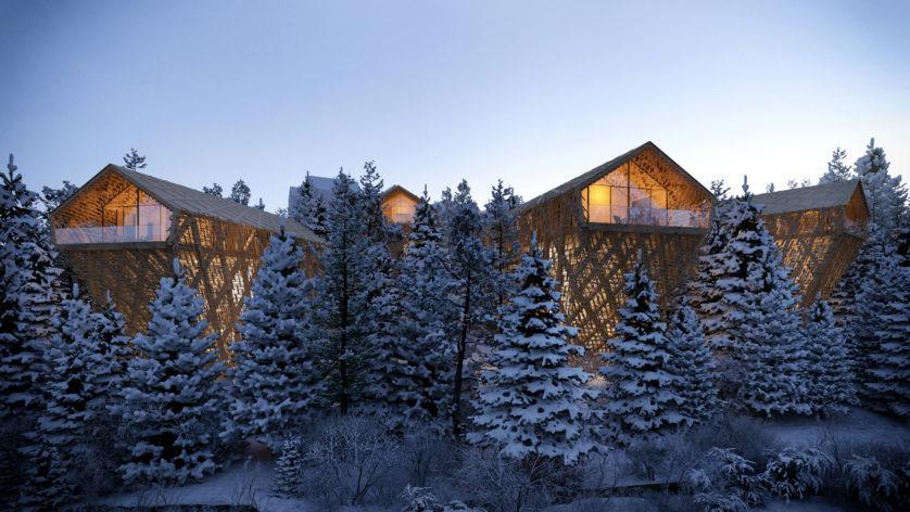 отель лес